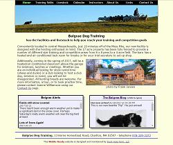 Balgrae Dog Training homepage